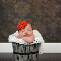 Springboro Newborn Photography